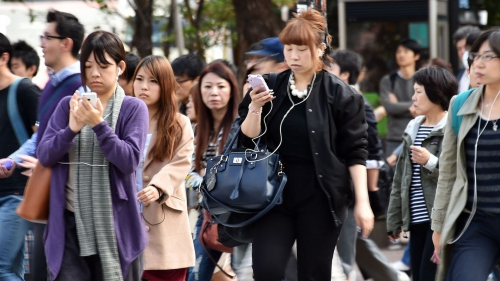 internet, bête, technologie, smartphone, toile
